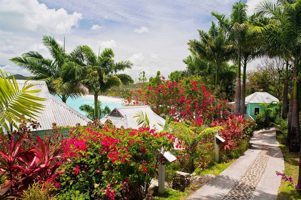 Cocos Hotel Grounds